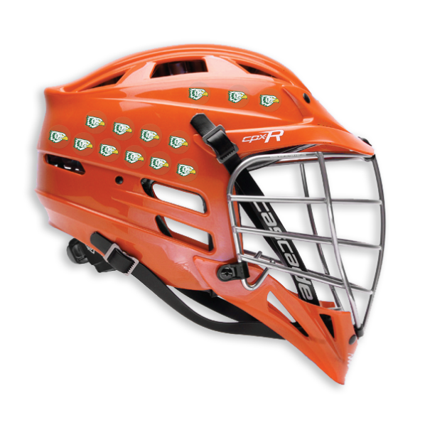 Lacrosse Helmet after renovation