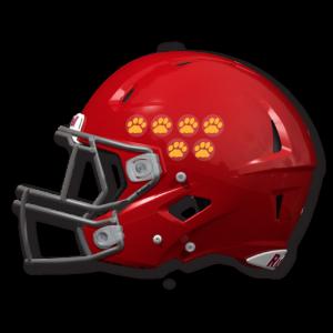 football helmet custom award