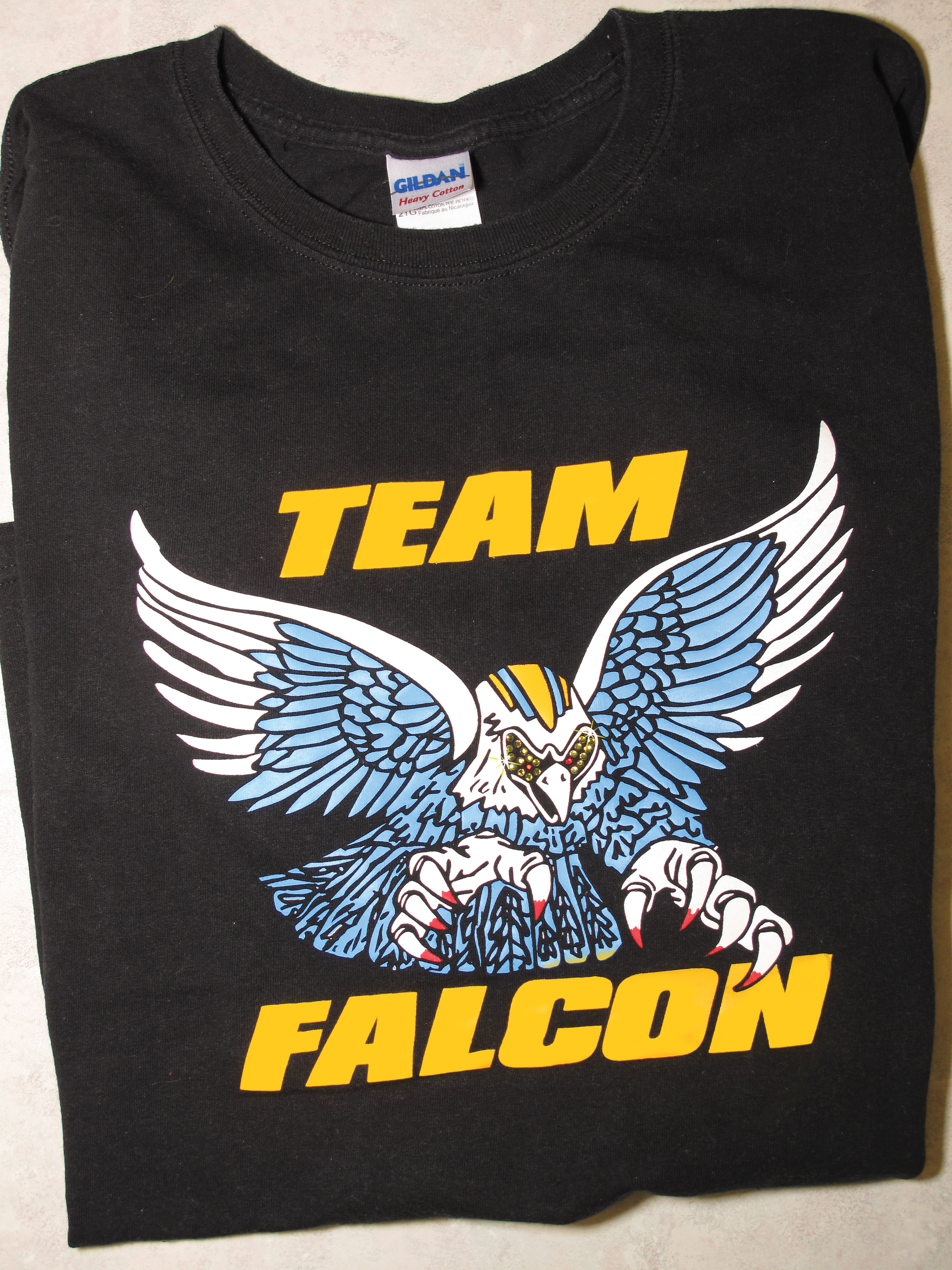 team_falcon_example