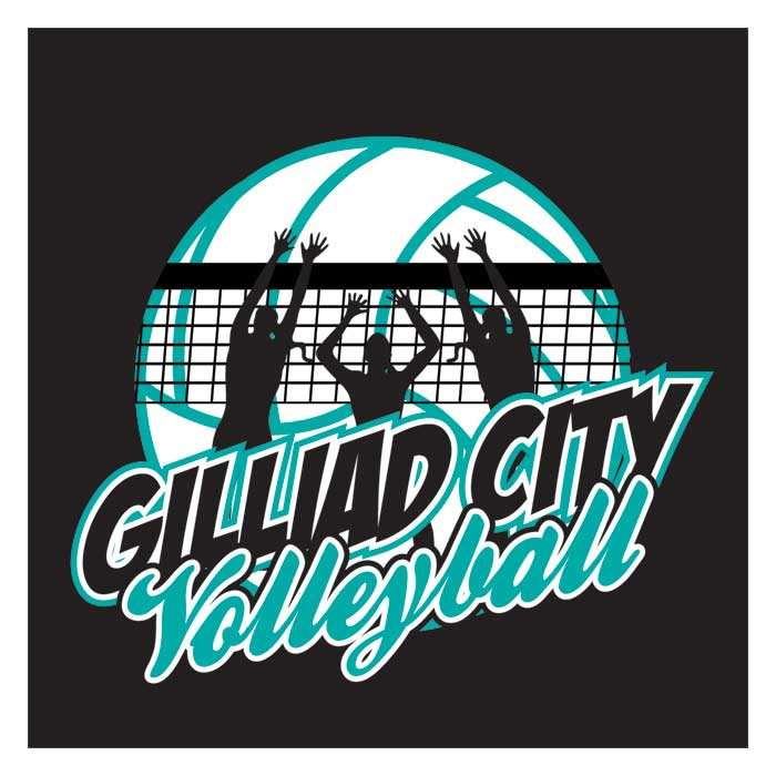 Beautiful VOLLEYBALL DESIGN TEMPLATES AND T-SHIRTS BB64
