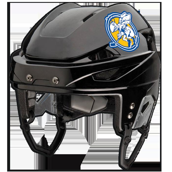 Hockey Helmet Decals