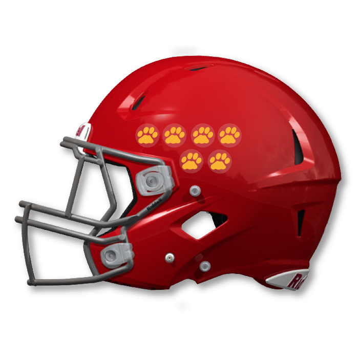 Football Helmet Stickers : Football helmet decals pro tuff