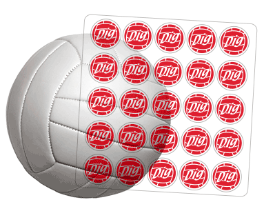 Award Decals Volleyball