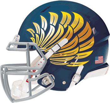 CHROME FOOTBALL HELMET DECALS